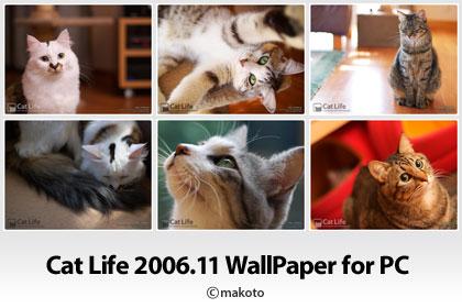 Cat Life 2006年11月の猫写真壁紙をアップ