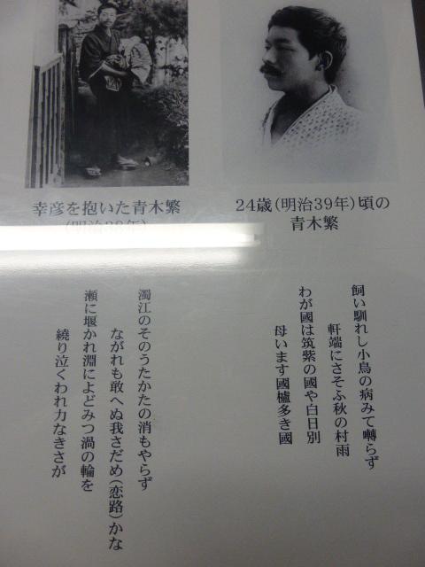 石橋エータローの画像 p1_34