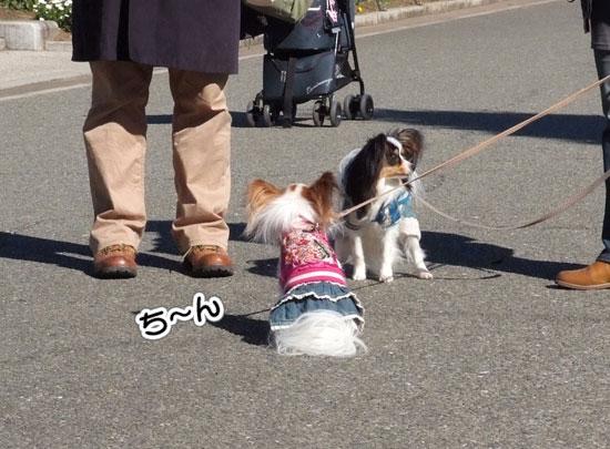 11.1.30_横浜オフ会2-5