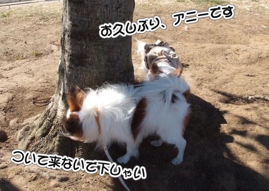11.1.30_横浜オフ会2-7