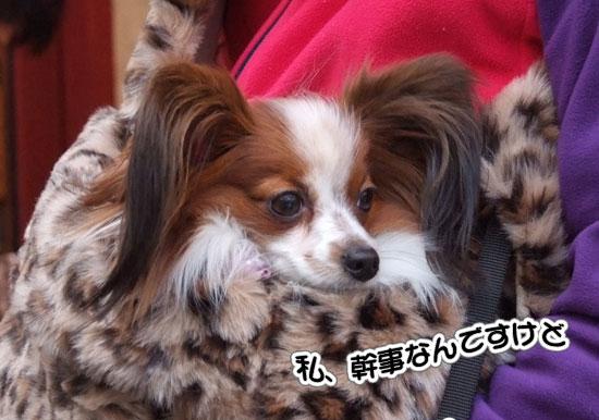 11.1.30_横浜オフ会2-22
