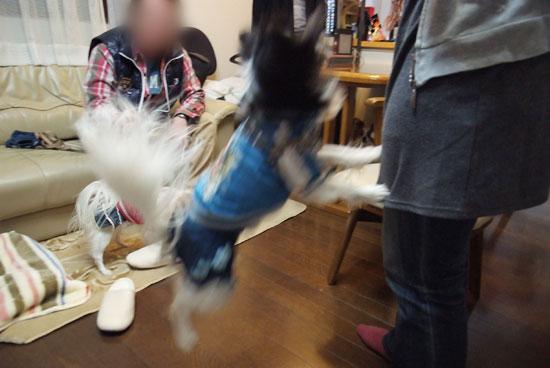 11.1.30_横浜オフ会3-21
