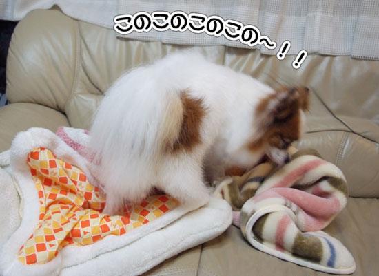 11.5.4_お風呂上がり1
