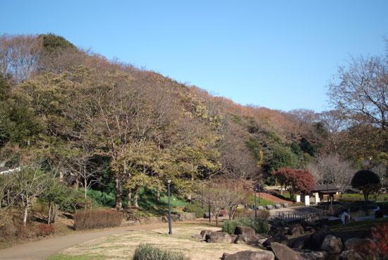 11.12.11_花島公園2