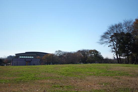 11.12.11_花島公園10