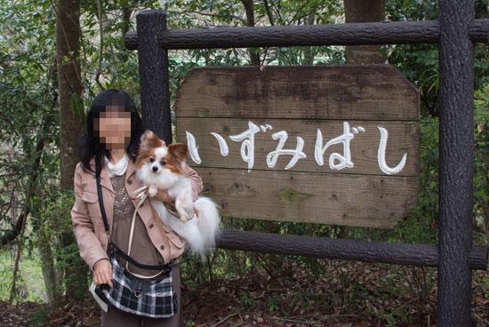 12.4.21_泉自然公園1