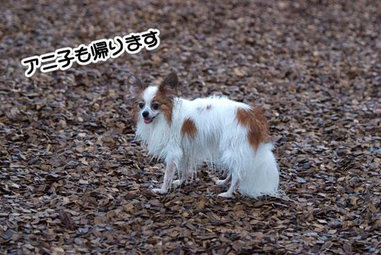 12.8.18_初プール19