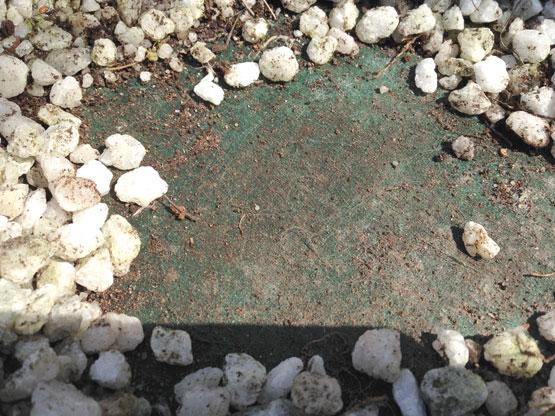 防草シートで雑草を防ぐ