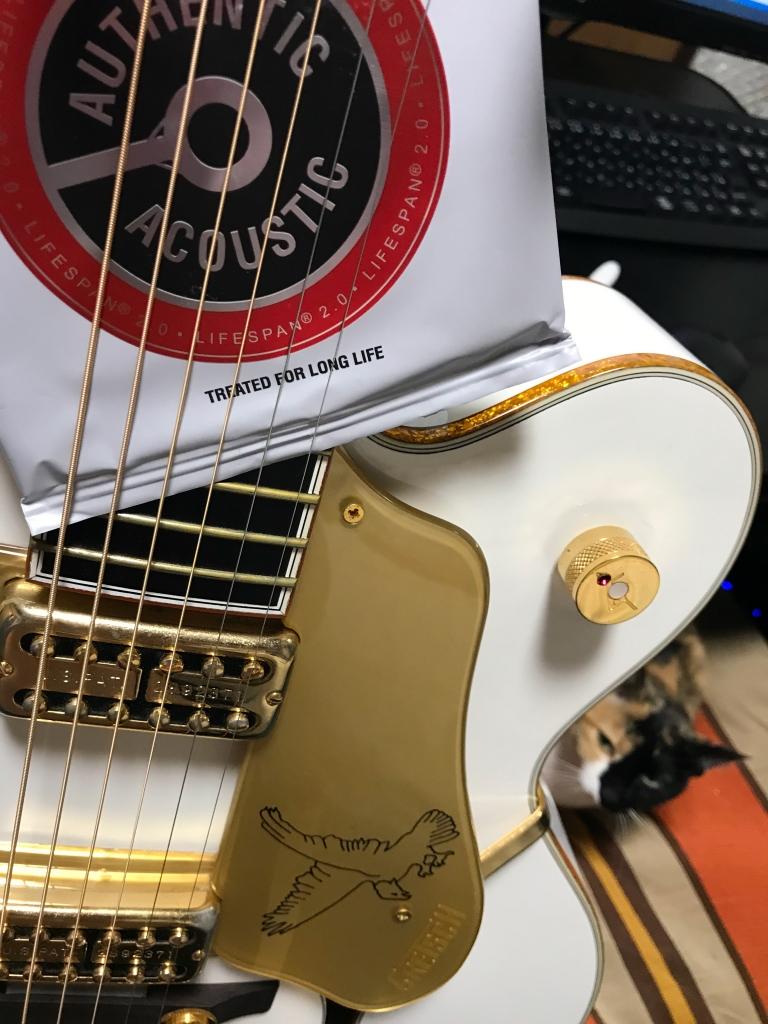 ホワイトファルコンにアコギの弦