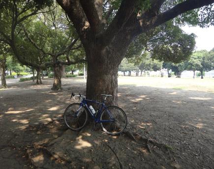 106日曜練@八景島107km、最高酷暑.JPG