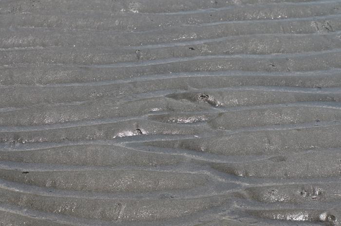 410砂浜の模様.JPG