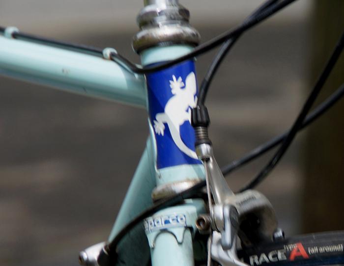603自転車再会onアモール.エ.ブレ.JPG
