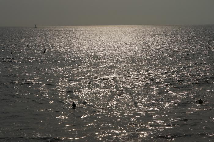 713三浦半島.6月の海.JPG