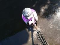 鉱物油清掃