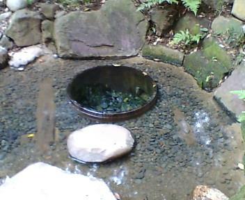 明治神宮清正の井戸