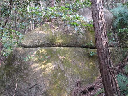 山の中の岩1