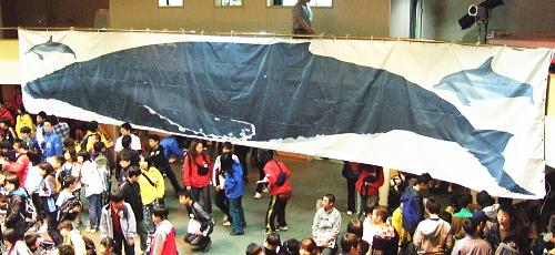 クジラの大きさ
