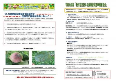 広報「みどりの風」2019年6月号