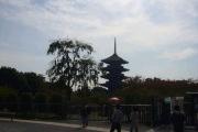京都ライド 003.jpg