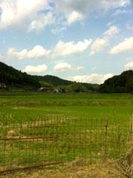 島根県 お寺