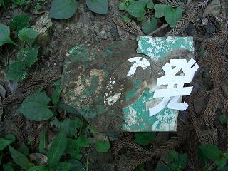 20050918 ゆう・もあ村 残骸1