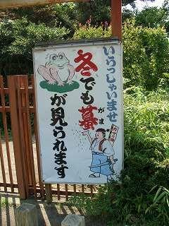 20050918 がま公園 看板