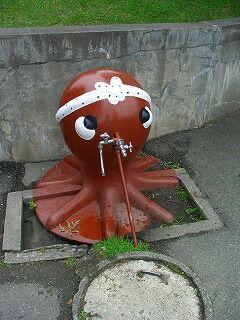 20060724 旭山動物園 タコ