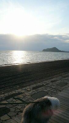 20070602 ハナちゃん 夕日