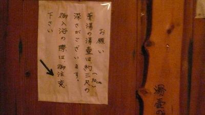 20080119 渋辰野館 温泉