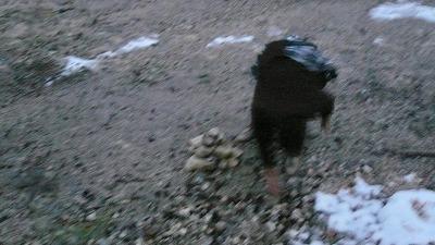 20080120 草津 三途の川