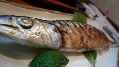 20080912 いまどき 秋刀魚