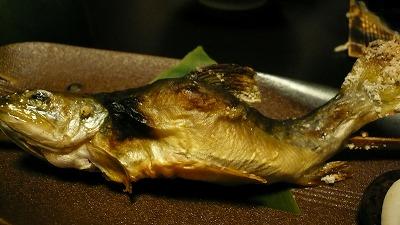 20080724 貝掛温泉 岩魚
