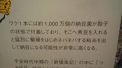 納豆博物館 説明