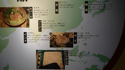 納豆博物館 世界の納豆