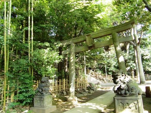 渋谷氷川神社鳥居
