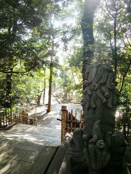 渋谷氷川神社狛犬