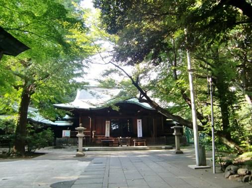 渋谷氷川神社拝殿