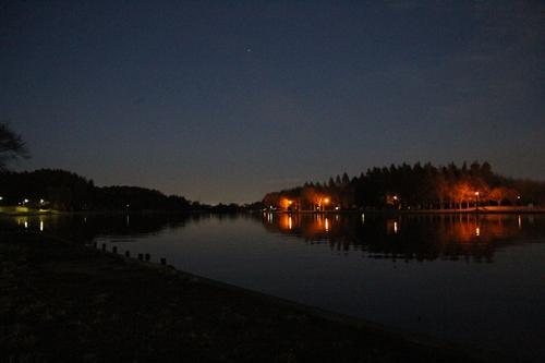 夜景の水元公園☆