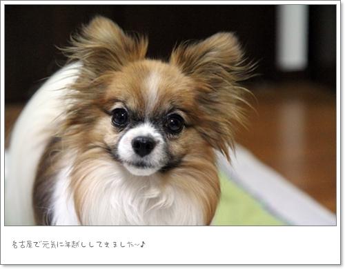 名古屋楽しかったね^^