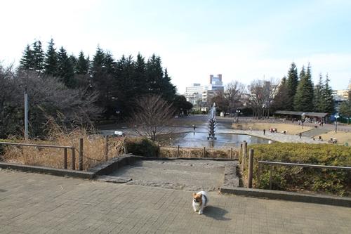 世田谷公園♪