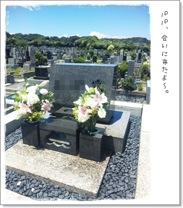 パパのお墓。