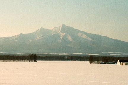 2003-02-1-14.jpg