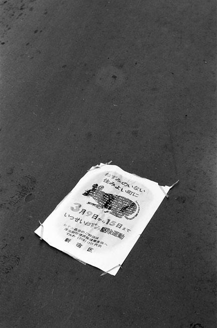 1970-03-19-14.jpg