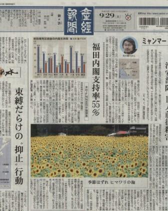 産経新聞(2007.9.29)天谷のひまわり