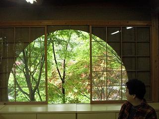 もみじの新緑が、美しい窓に映えます