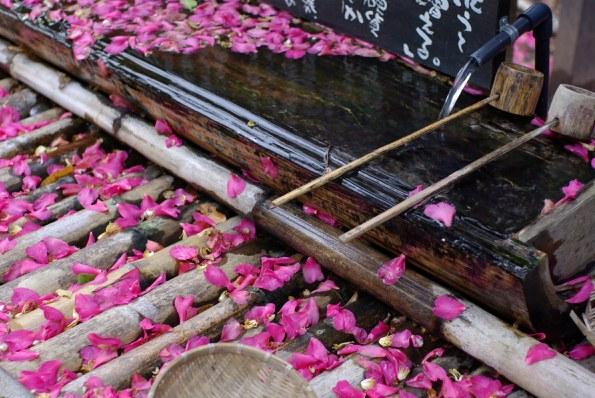 杖立温泉椿の湯