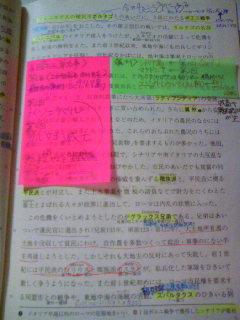 080115_0329~01.JPG