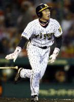 1回阪神2死一塁、金本が右越えに先制本塁打を放つ=甲子園