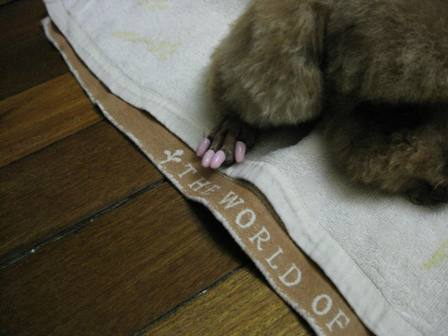 ピンクの爪