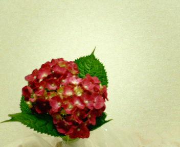 20060614_177473.jpg